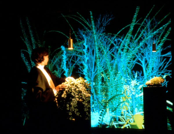 Christa Sommerer, Laurent Mignoneau, Interactive Plant Growing, 1993