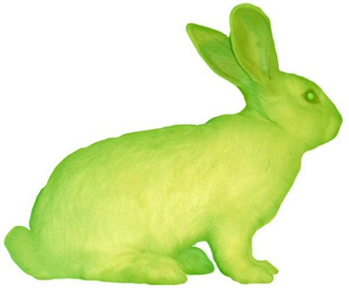 Eduardo Kac, GFP Bunny (2000).  Courtesy of the artist.