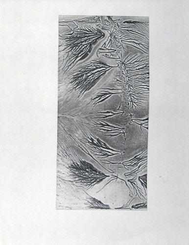 [Process: Electrostatic Thermal / Sonia Landy Sheridan], c.1970, 1 sheet: photocopy on paper ; 22 X 28 cm. Made by Sonia Landy Sheridan using the Electrostatic Thermal process.