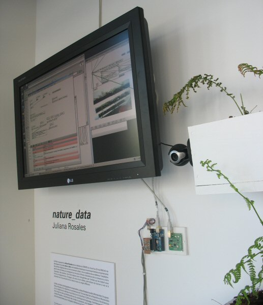 Juliana Rosales, nature_data, 2008